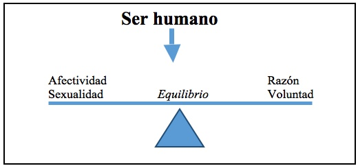 Equilibrio en el ser humano