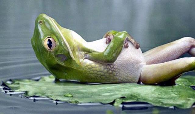 Aprender a descansar