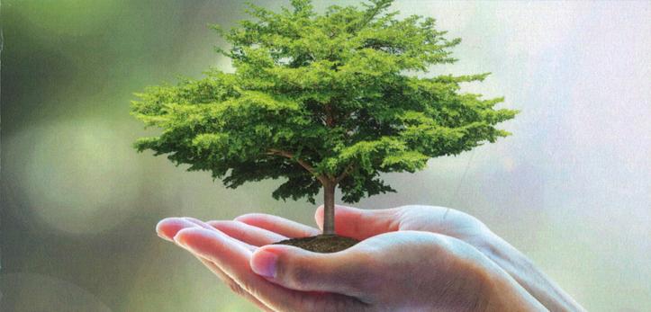"""Featured image for """"El árbol de la vida (mental), cuyo fruto es la felicidad"""""""